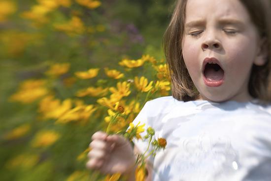 Аллергия на весну форум