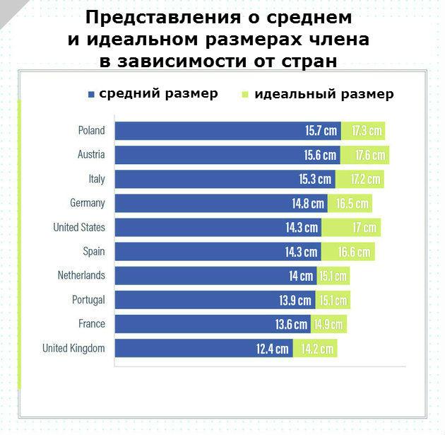 Какой он, идеальный размер? Опрос в 10 странах показал, что...