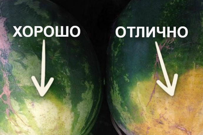 Как правильно выбрать арбуз: 5 неожиданных советов