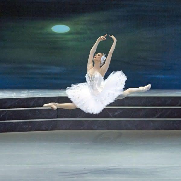 Лебединое озеро, Ольга Есина  Wiener Staatsoper / Michael Poehn