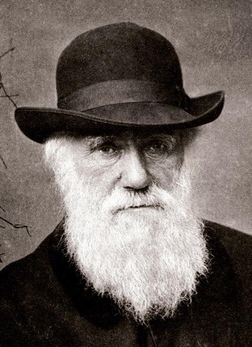 Английский натуралист Чарльз Дарвин.