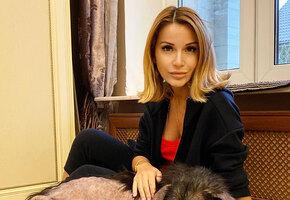 «Пять пуль, рак»: ведущая шоу «Дом-2» Ольга Орлова выходила погибающую собаку