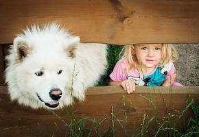Дети и собаки — ми-ми-ми навеки