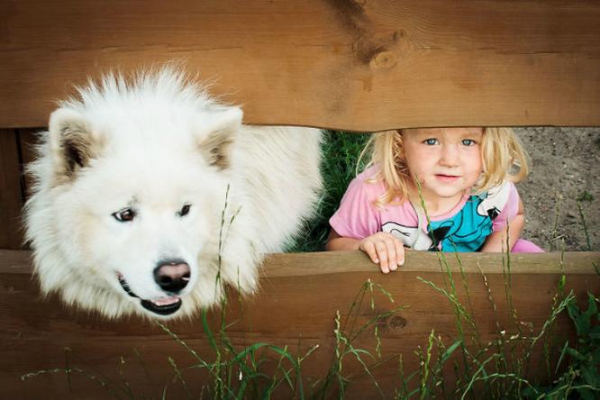 Дети исобаки — ми-ми-ми навеки