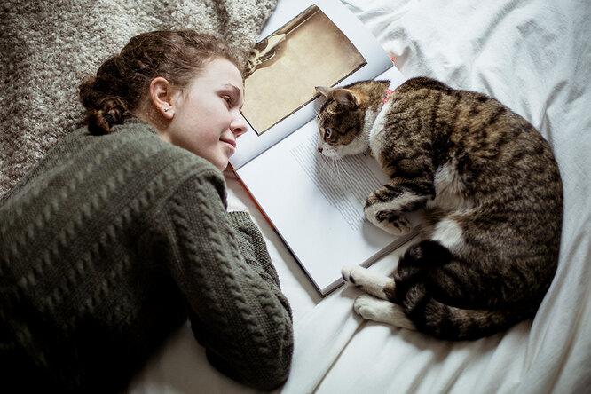 Почему кошки пристально смотрят в глаза