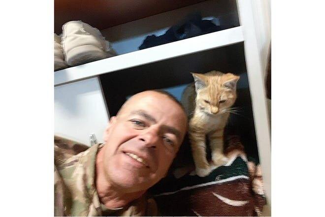 кошка салли, солдат и котенок