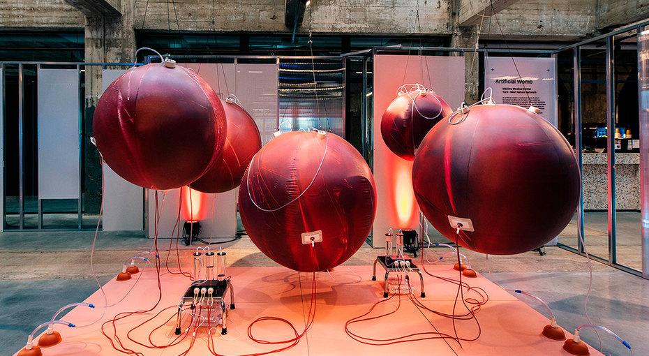 Искусственную матку обещают через5 лет создать ученые изНидерландов
