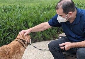 Успел увидеть родное лицо: пожилой пес вернулся к хозяину после 10 лет скитаний