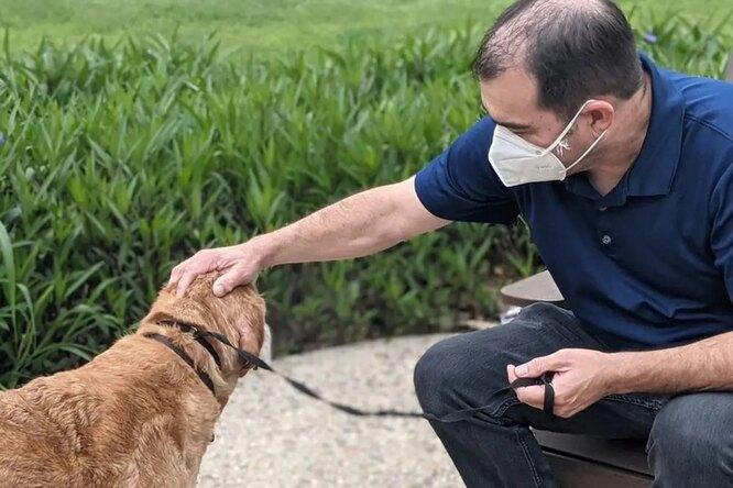 Успел увидеть родное лицо: пожилой пес вернулся кхозяину после 10 лет скитаний