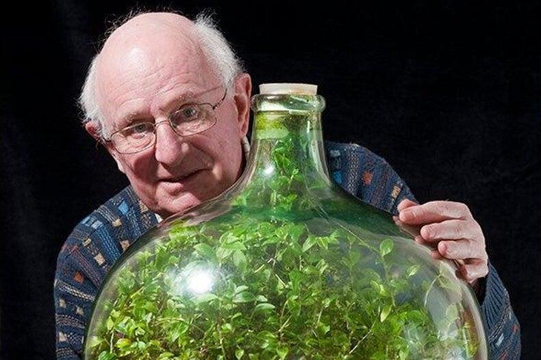Такое возможно? Мужчина вырастил вбутылке сад, полив его один раз за50 лет