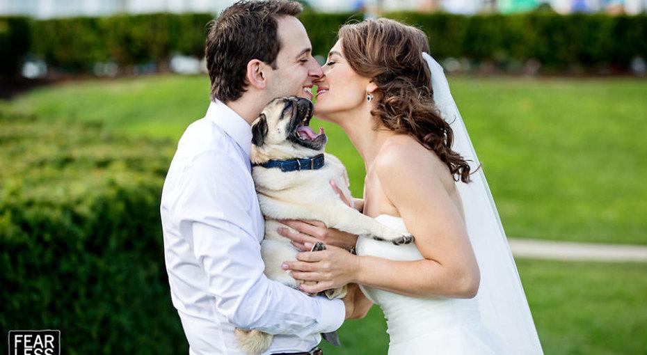 Свадебные фотографии, какими их еще невидели