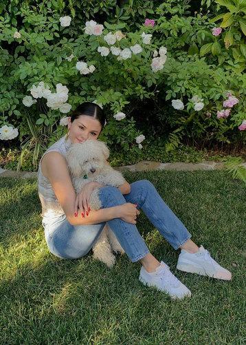 Селена Гомез иее шесть собак