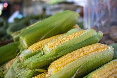 Что приготовить измолодой кукурузы: энчилада, ризотто, салат имногое другое