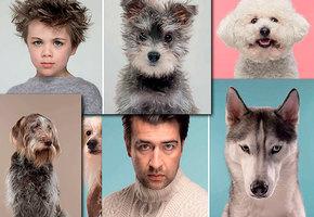 Эти фотографии доказывают: собаки похожи на своих владельцев (ну или наоборот)
