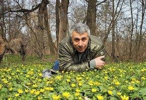 «Препараты для лечения вич-инфекции глотать не буду»: доктор Комаровский рассказал, как будет лечиться от коронавируса, если заболеет