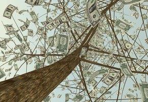 Штраф за шашлыки: в каких случаях отдых на природе может стоить вам денег