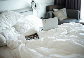 Кровать заправлять не нужно! Все о том, как убираться в квартире во время карантина