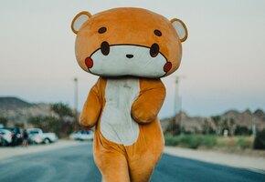 Парень в костюме медведя прошел 770 км ради благого дела