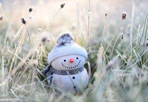 По домам: в выходные в Москве грянут аномальные морозы