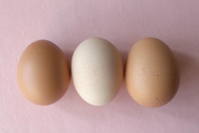 Вареное яйцо