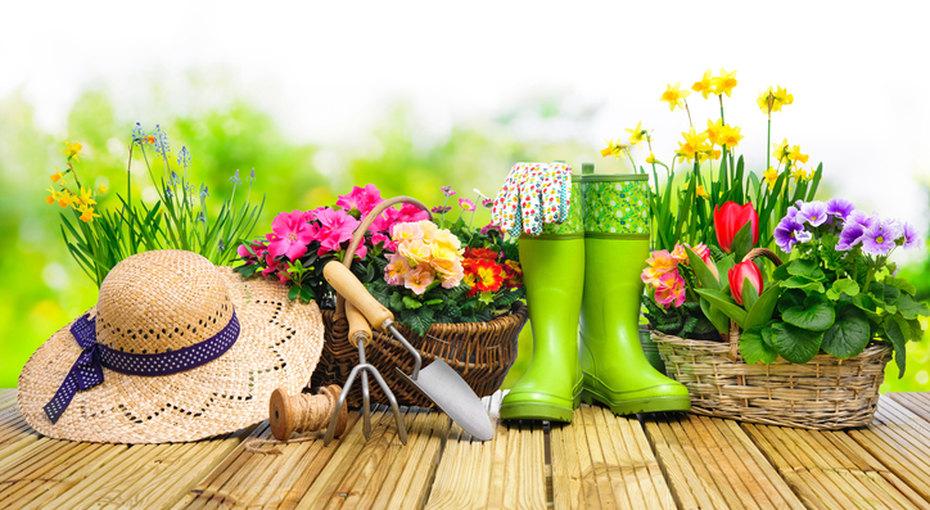 Дачный сезон: как сделать сад местом уюта