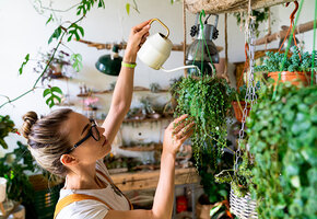 10 самых полезных растений для улучшения концентрации