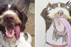Британец собрал 5000 фунтов длябездомных людей, рисуя смешные портреты животных