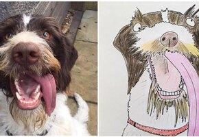 Британец собрал 5000 фунтов для бездомных людей, рисуя смешные портреты животных