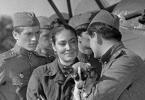СТС Love соберет военные истории любви