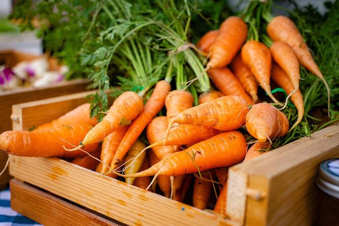 Рецепты сморковкой: сорешками, глазированная, по-корейски, запеканка