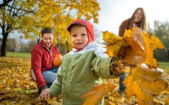 Почему листья осенью меняют цвет? Сможете ли вы объяснить это ребенку?
