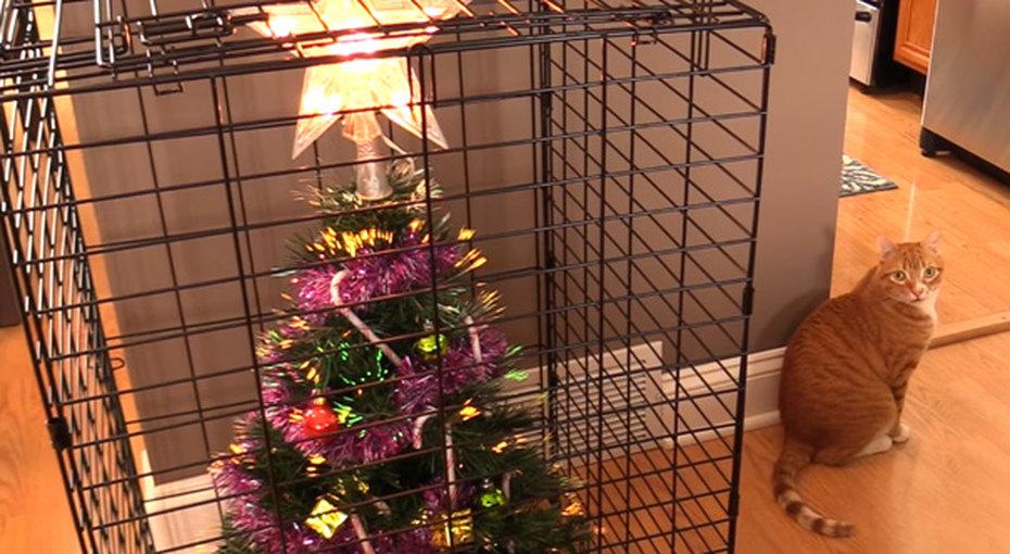 15 гениальных способов уберечь елку откошек, собак (и детей)