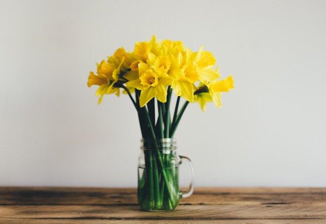 Будет ли ранняя весна в этом году?
