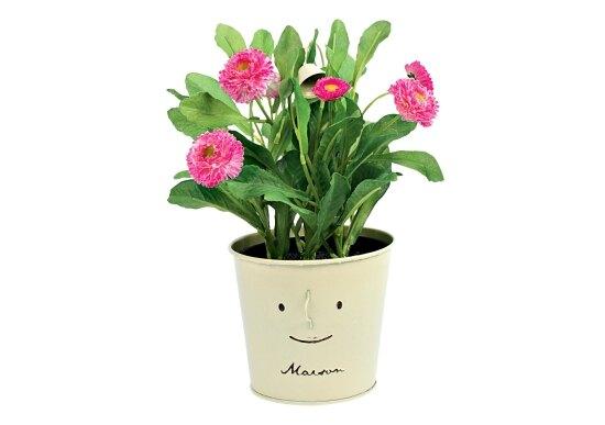 Горшочек сцветами, Pichshop