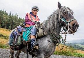 Ради тех, кого любит: пожилая британка каждый год проезжает на пони 1000 км