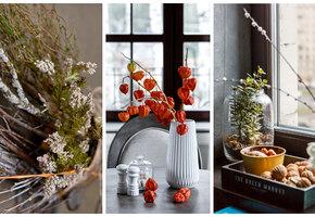 Тайный фэншуй: Какие растения в доме держать не стоит