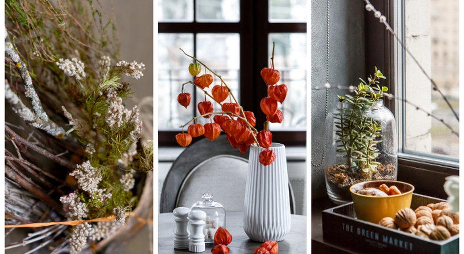 Тайный фэншуй: Какие растения вдоме держать нестоит