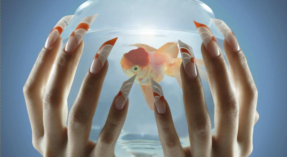 Московский салон предложил украсить ногти аквариумом сживой рыбкой