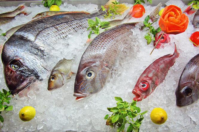 Что надо знать озамороженной рыбе, прежде чем купить ее вмагазине