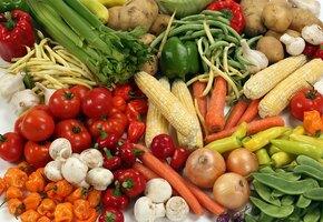 Отец и сын начали выращивать овощи и прокормили во время пандемии 20 семей