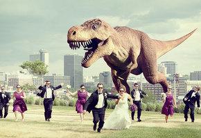 4 свадебных признака, что молодожены не будут вместе долго