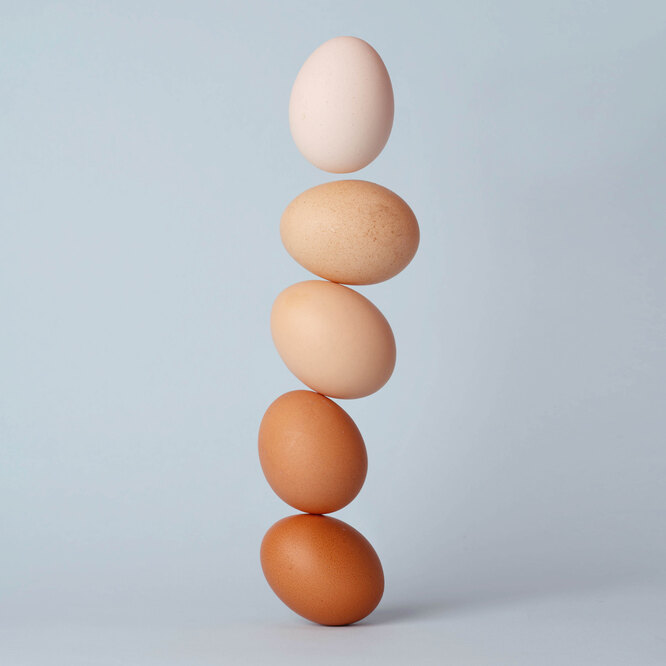 Какие яйца лучше? Черные или белые?