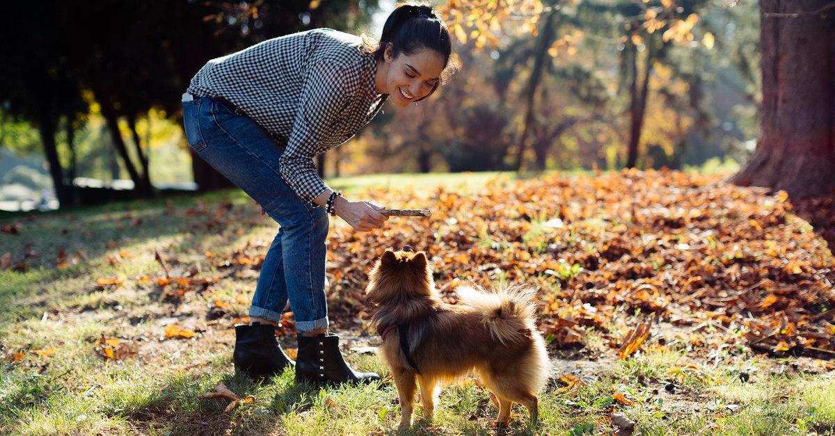 Здоровая осень: 9 советов, которые помогут оставаться активной и бодрой