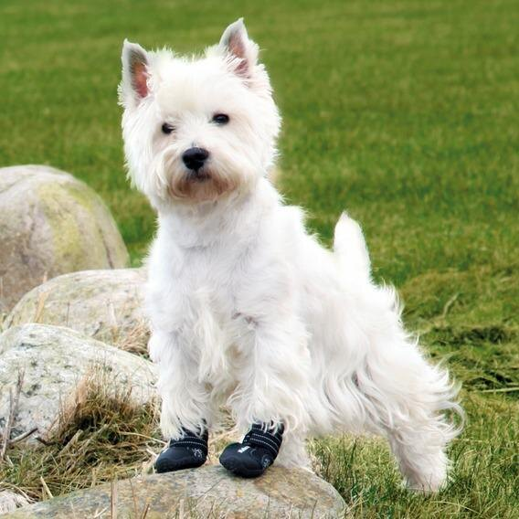 "Ботинки для собак (далматин) Trixie ""Walker Active, 1313 руб."