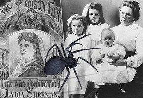 Черная вдова: четыре женщины, брак с которыми вел в могилу