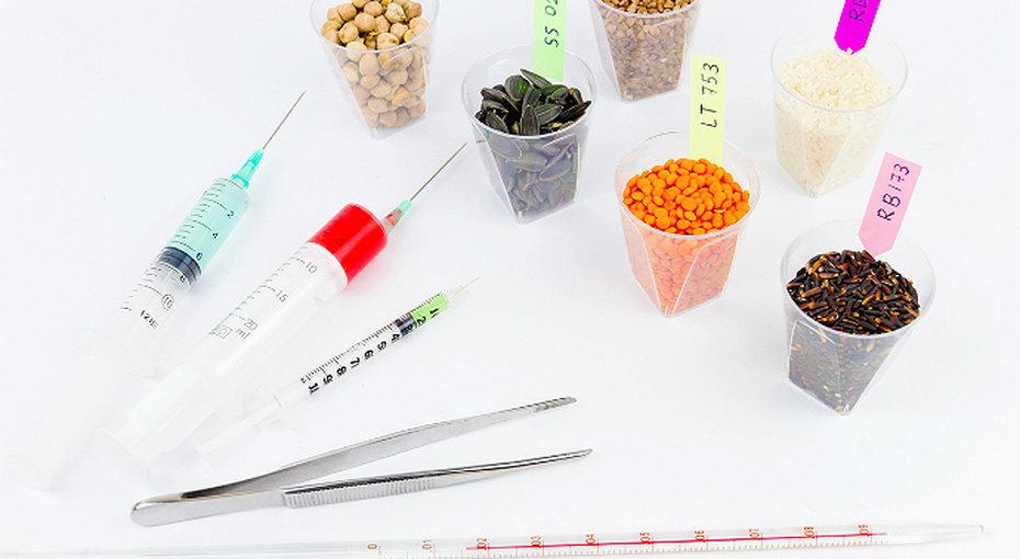 Как отличить продукты ГМО инужно ли их бояться?