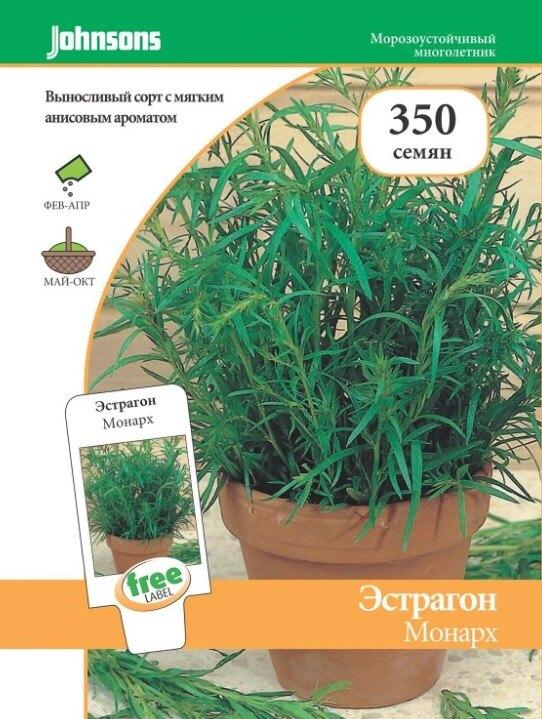 Фото: лечебные травы