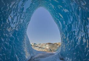 Ученые оживили животных, замерзших 24 тысячи лет назад