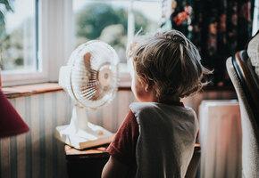 От мини-вентилятора до сушки овощей: товары, которые нужно заказать этим летом