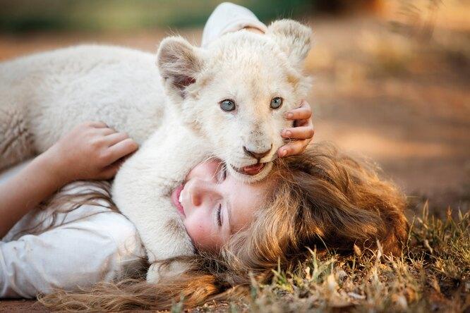 """Кадр из фильма """"Мия и белый лев"""""""